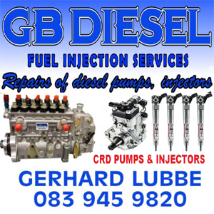 Diesel CRD(Common Rail) Injector & Pump Services